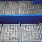 biologicheskaja zagruzka10 150x150 Ручные решётки